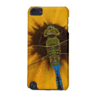 黒目のスーザンのDarnerの共通の緑の男性 iPod Touch 5G ケース