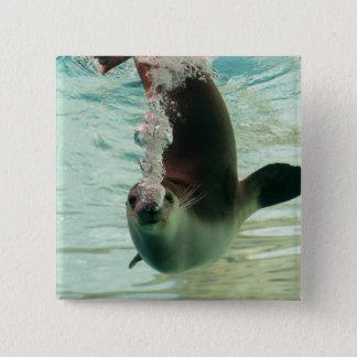 鼻からの灰色のシールの潜水の水中泡 5.1CM 正方形バッジ