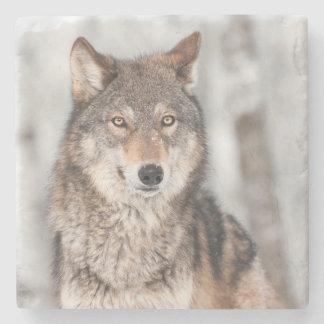 1つの耳の背部を持つオオカミ(イヌ属ループス) ストーンコースター