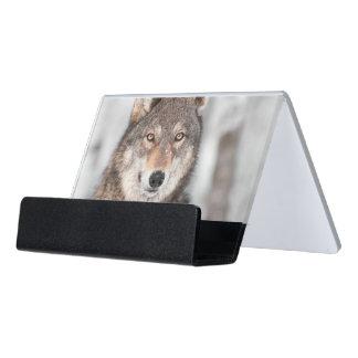 1つの耳の背部を持つオオカミ(イヌ属ループス) デスク名刺ホルダー