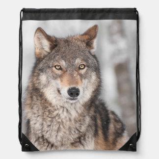 1つの耳の背部を持つオオカミ(イヌ属ループス) ナップサック