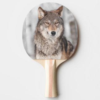 1つの耳の背部を持つオオカミ(イヌ属ループス) 卓球ラケット