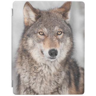 1つの耳の背部を持つオオカミ(イヌ属ループス) iPadスマートカバー