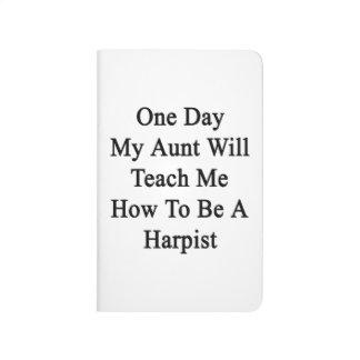 1日Teach Me Howハープ奏者がある私の叔母さん ポケットジャーナル