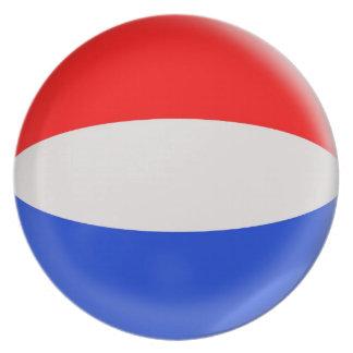 10インチのプレートのオランダのオランダの旗 プレート