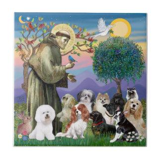 10匹の犬を持つ聖者フランシス島 タイル