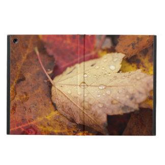 10月の葉の雨滴 iPad AIRケース