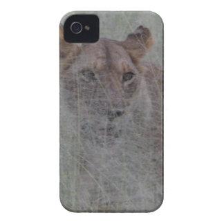 100_1114.JPG Case-Mate iPhone 4 ケース