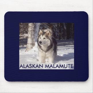 100_5815のアラスカンマラミュート マウスパッド