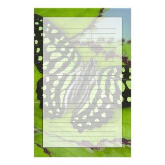 11の蝶のSammamishワシントン州の写真 便箋
