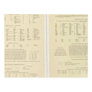 11517伝説エジプト、エリトリア、エチオピア、ソマリア ポストカード