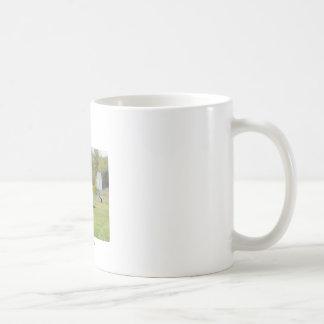 """11""""マグ- Bellancaの航空機 コーヒーマグカップ"""