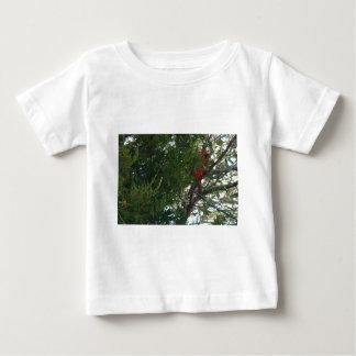 11 23 2008 077のヒマラヤスギTrのオスの北の(鳥)ショウジョウコウカンチョウ ベビーTシャツ