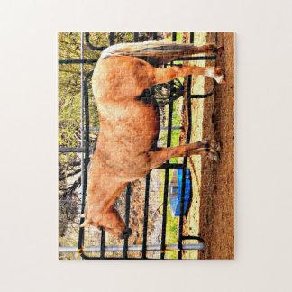 11x14写真のゲームのパズル- Palominoの馬 ジグソーパズル