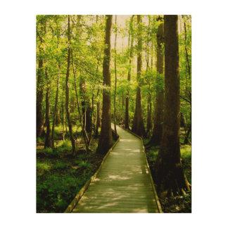 11x14木製のキャンバス-森林道 ウッドウォールアート