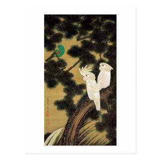 12. 老松鸚鵡図、若冲のマツ木及びオウム、Jakuchū ポストカード