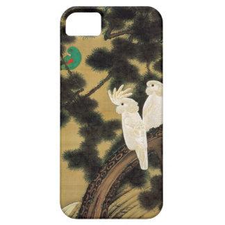 12. 老松鸚鵡図、若冲のマツ木及びオウム、Jakuchū iPhone SE/5/5s ケース