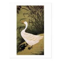 13. 芦鵞図、若冲のリード及びガチョウ、Jakuchūの日本芸術 ポストカード