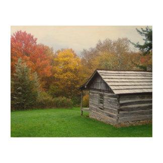 14x11木製のキャンバス-ファーガソンの小屋 ウッドウォールアート