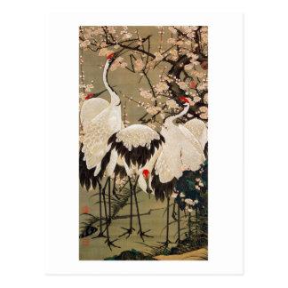 15. 梅花群鶴図、若冲のプラムは及びクレーン、Jakuchū活気付きます ポストカード
