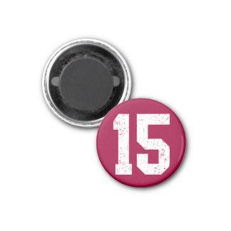15 15円形の磁石 マグネット