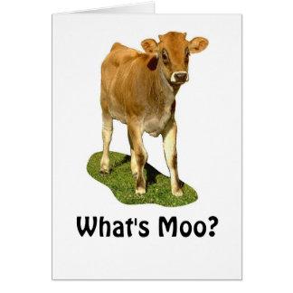 1607513は、何Mooですか。 カード
