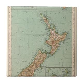 169ニュージーランド、ハワイ、タスマニア タイル