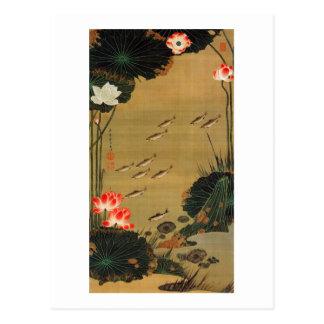 17. 蓮池遊魚図、はすが付いている若冲の池、Jakuchū ポストカード