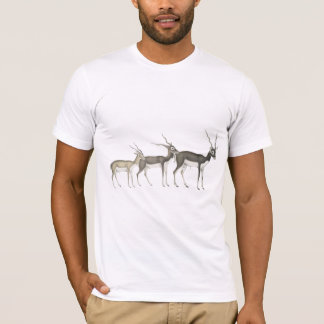 1829年頃インドのカモシカ Tシャツ