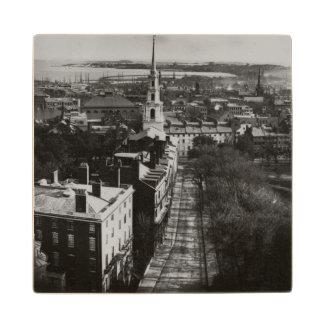 1859年:  州の家からのボストンの眺め ウッドコースター