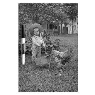 1880年代庭の愛らしい女の子およびオンドリのカート ホワイトボード