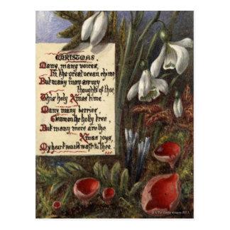 1890年頃: Snowdrops ポストカード