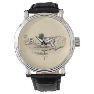 19世紀のヴィンテージのペルシャのヒツジの古いイラストレーションの子ヒツジ 腕時計