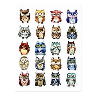 19羽そして1羽の猫およびフクロウ ポストカード