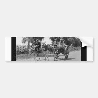1934年頃カートそしてろばを持つエジプト人 バンパーステッカー