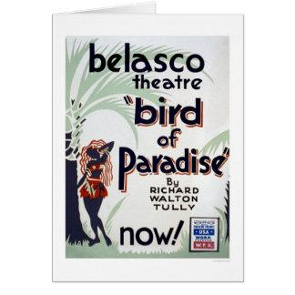 1939 WPA極楽鳥 カード