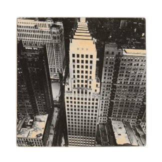 1960年:  シカゴの超高層ビルの空中写真 ウッドコースター