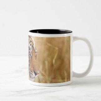 2から見ている王室のなベンガルトラ ツートーンマグカップ