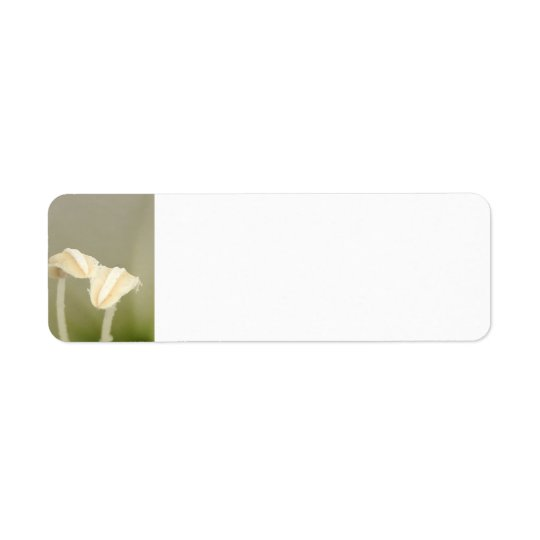 2つの花の宛名ラベル ラベル