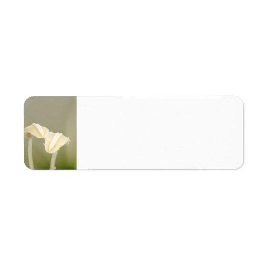 2つの花の宛名ラベル 返信用宛名ラベル