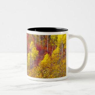 2のローガン渓谷ユタのカラフルな《植物》アスペン ツートーンマグカップ