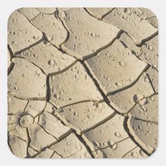 2の谷の床の割れた泥の形成 正方形シールステッカー