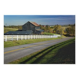 2のBluegrassの地域による田園道 フォトプリント