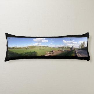 2パノラマ式の写真の黒のカスタムの抱き枕 抱き枕