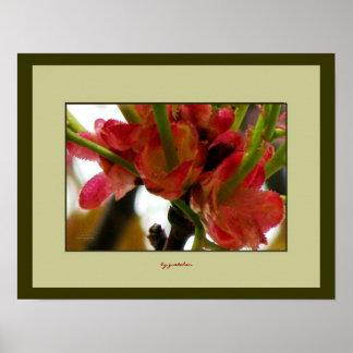2ポスターの上のクランベリーの花の基盤の終わり ポスター