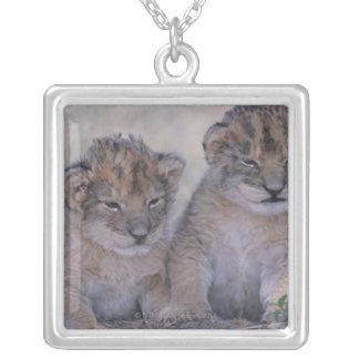 2ライオンの子 シルバープレートネックレス