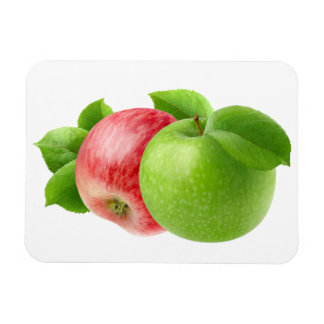 2個のりんご マグネット