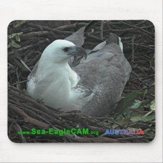 2個の卵の横の2013年のマウスパッドに坐っているミイラ マウスパッド