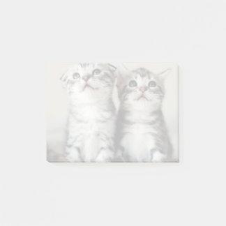 2匹のかわいい子ネコ ポストイット