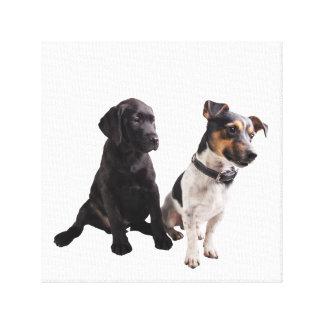 2匹のかわいい子犬座 キャンバスプリント